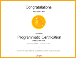 google programmatic certification viom institute