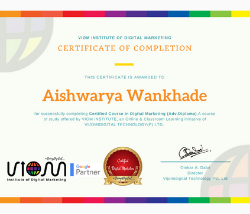 viom institute of digital marketing certification